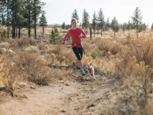 Ruffwear Hi & Light Harness and Trailrunner System